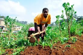 SUKUMA PEOPLE TANZANIA S LARGEST TRIBE WITH UNIQUE BUGOBOBOBO.