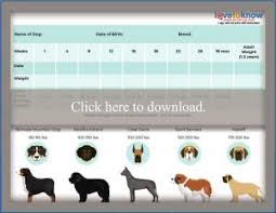 Bernedoodle Growth Chart Printable Puppy Weight Charts Lovetoknow