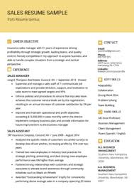 Good Resume Examples Retail Retail Sales Associate Resume Sample Writing Tips Resume