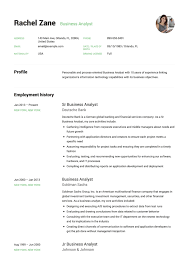 Luxury Business Resume Template Template Everywhere Template