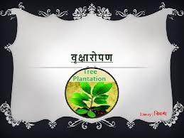 hindi essay on tree plantation वृक्षारोपण पर  hindi essay on tree plantation वृक्षारोपण पर निबंध