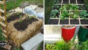 garden in a bag. 10 Weird Intensive Gardening Methods That Really Work Garden In A Bag
