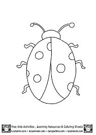 Ladybug Outline Template Printables Early Childhood