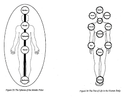 Diagram of a being