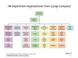 Human Resource Department Organizational Chart Human Resource Management