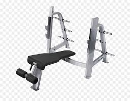 bench weight nautilus inc exercise equipment exercise machine png