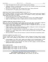 Vice President Marketing Resume Beauteous Marketing Operations Resume Example