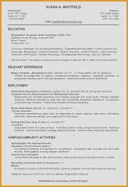 Authorization Specialist Resume Petite It Specialist Resume Elegant