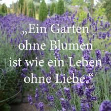 Gartensprüche Lavendel Garden Gartensprüche Sprüche Garten