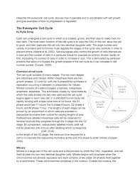 Dna Essay Cells Genes Essay Eukaryotic Cell Cycle 1955825 Ox