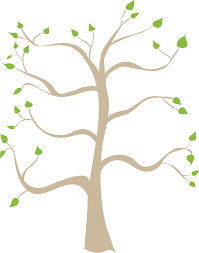 Family Tree Tree Template Blank Family Tree Template Png Four Generation Wikiproverbs