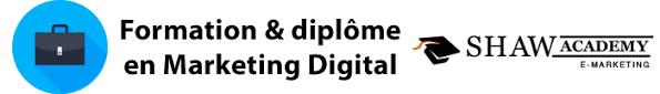 Formation marketing digital avec diplôme Shaw Academy