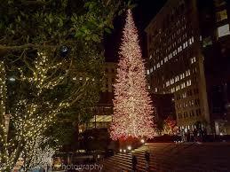 San Francisco Christmas  Union Square San Francisco During The Christmas Tree In San Francisco