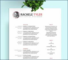 Resume Template Microsoft Word Download Elegant Resume Template Word