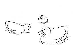 Small Picture Coloring Pages Free Printable Duck Coloring Pages For Kids Duck