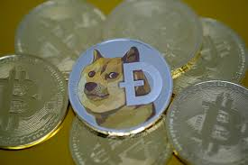 If you trade shares in the robinhood, they allow you to move your stocks to another stockbroker. How To Buy Dogecoin On Binance Kraken And Other Cryptocurrency Exchanges
