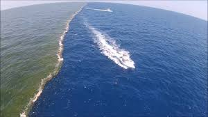 Image result for ATLANTIC OCEAN