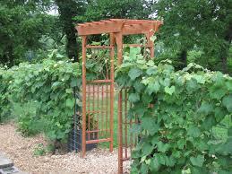 diy friday garden arbor how to build