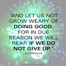 Galations 69 Dont Give Up Galatians Inspirational Bible