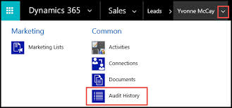General Dynamics Org Chart Microsoft Dynamics 365 Auditing The Crm Book Powerobjects