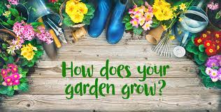 flowers and flower pots on the ground with words how does your garden grow
