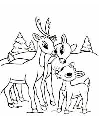 christmas baby reindeer coloring pages. Reindeer Coloring Pages And Christmas Baby