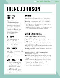 Resume Font Size And Format Endearing Most Popular Resumes Formats ...