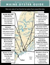Oyster Grading Chart Maine Oyster Guide Learn About What Makes Maines Oysters