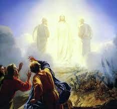 Dazzling Jesus   Draughting Theology