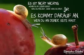 Liebe Und Freundschaft Weise Sprueche Mit Schnecken 600395 Gute