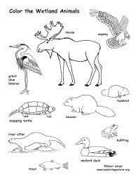 Small Picture Ocean Habitat Coloring Pages Animal Habitat Coloring Pages