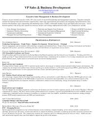 Sample Resume For Experienced Business Development Manager Save