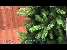 ЕЛЬ <b>ROYAL CHRISTMAS</b> WASHINGTON - YouTube