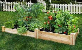 Small Picture Best Vegetable Gardens Stunning Fencing Ideas For Vegetable