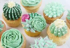 Succluent Cupcakes I Am Baker