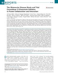 PDF) The Glomerular Disease Study and Trial Consortium: A Grassroots  Initiative to Foster Collaboration and Innovation
