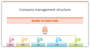 Coo Org Chart Organizational Chart Coo Cfo Cmo Icons Ppt Blog Creative