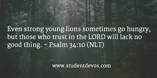 Daily God Quotes Beauteous Daily Bible Verse December 48 Student Devos Youth And Teenage