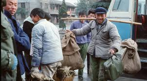 a photographic essay quadrant online 2 in 1979 there was less of a separation between urban life and the rural hinterland here a peasant struggles off the bus sack loads of ducks