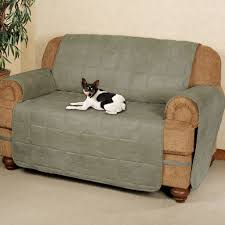 luxury pet furniture. Pet Couch Cover Luxury Sofa Capecaves Furniture
