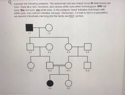 Solved Consider The Following Pedigree The Autosomal No