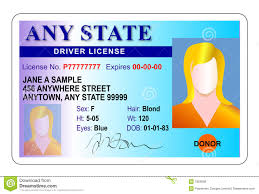 Identity - Woman Illustration Card Of Driver 7824580 License Identity Stock