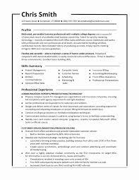 Functional Resume Template Free Sample Combination Resume Format Awesome Functional Resume 4