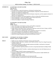 Salesforce Experienced Resumes Salesforce Com Developer Resume Samples Velvet Jobs