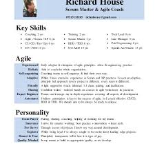 Download Scrum Master Resume
