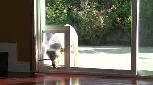 interior door with cat door built in storm door with dog door built in pet ready interior door