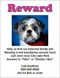 Lost Pet Flyer Maker Classy Flyers For Missing Pets In Texas Whith A Reward Lost Dog Flyer