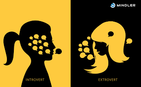 Image result for introvert vs extrovert