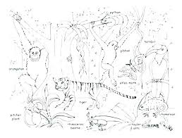 Animal Coloring Pages Printables Nicolecreationsinfo