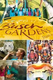 busch gardens in tampa. Busch Gardens In Tampa